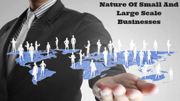 Nature Of The Small And Large Scale Businesses